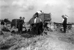 jaren 40-60 283 Op de dorsmachine Gijsbert D. Boomsma