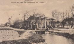 """Pelmolen  """"De Welkomst"""" in Minnertsga 1915."""